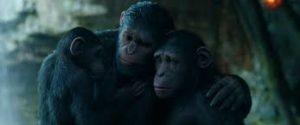 war of apes