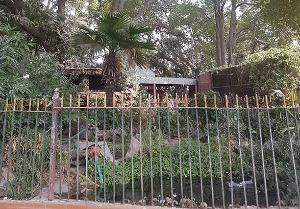 Karachi Zoo (14)